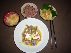 homecooked niku dofu and eggplant