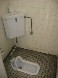 the other japanese toilet