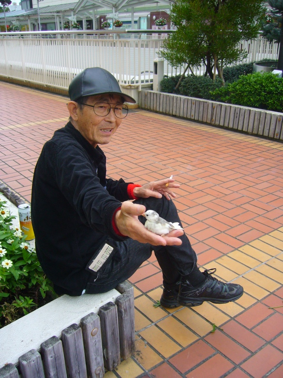 An old man haning out with his animals in front of Toyotashi station