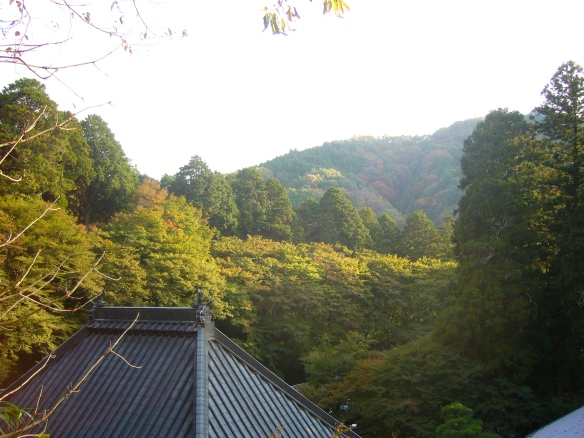 Autumn leaves, Asuke in Toyota City