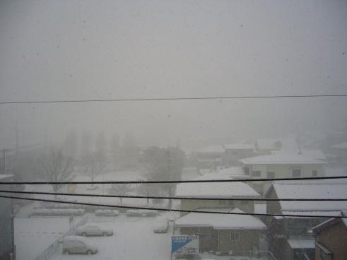 Snow in Toyota City, Japan