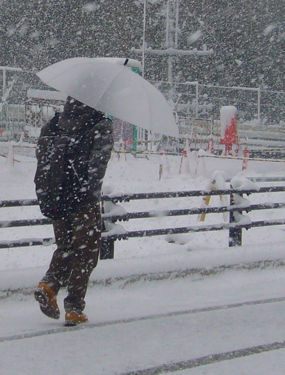 Umbrella and snow in Toyota City, Japan