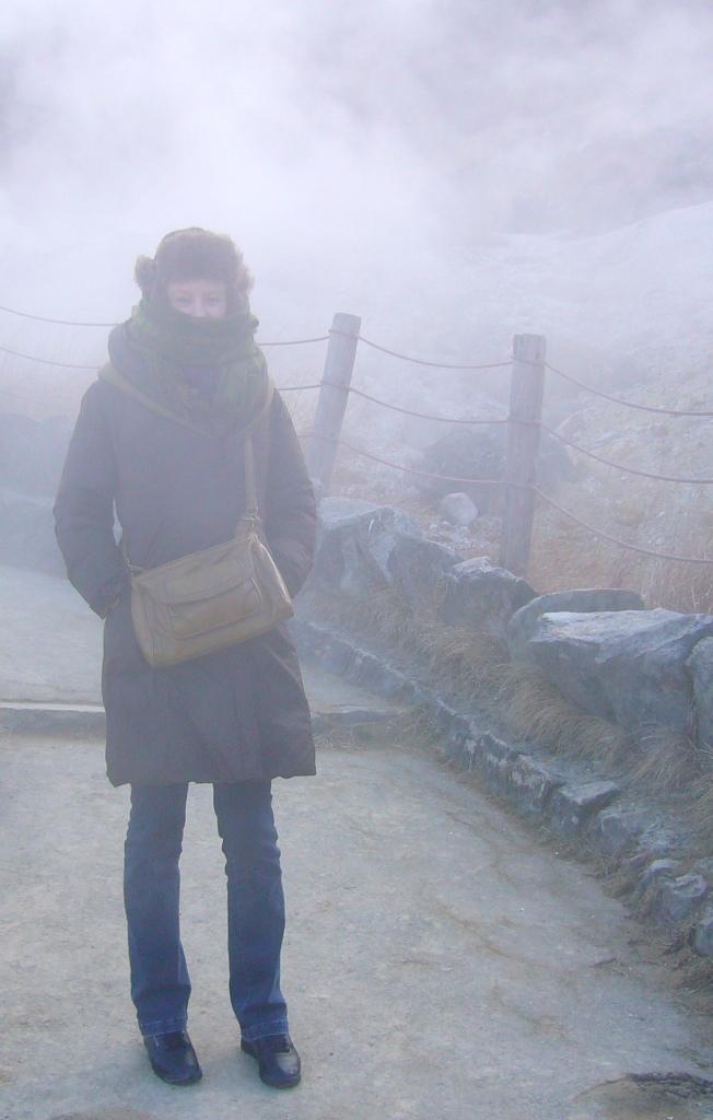 winter armour