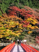 korankei autumn leaves in Toyota City