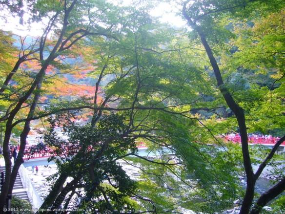 Korankei gorge in toyota city