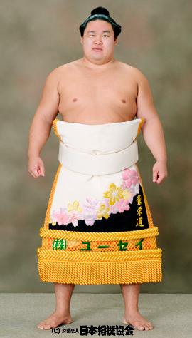 goeido keshō-mawashi