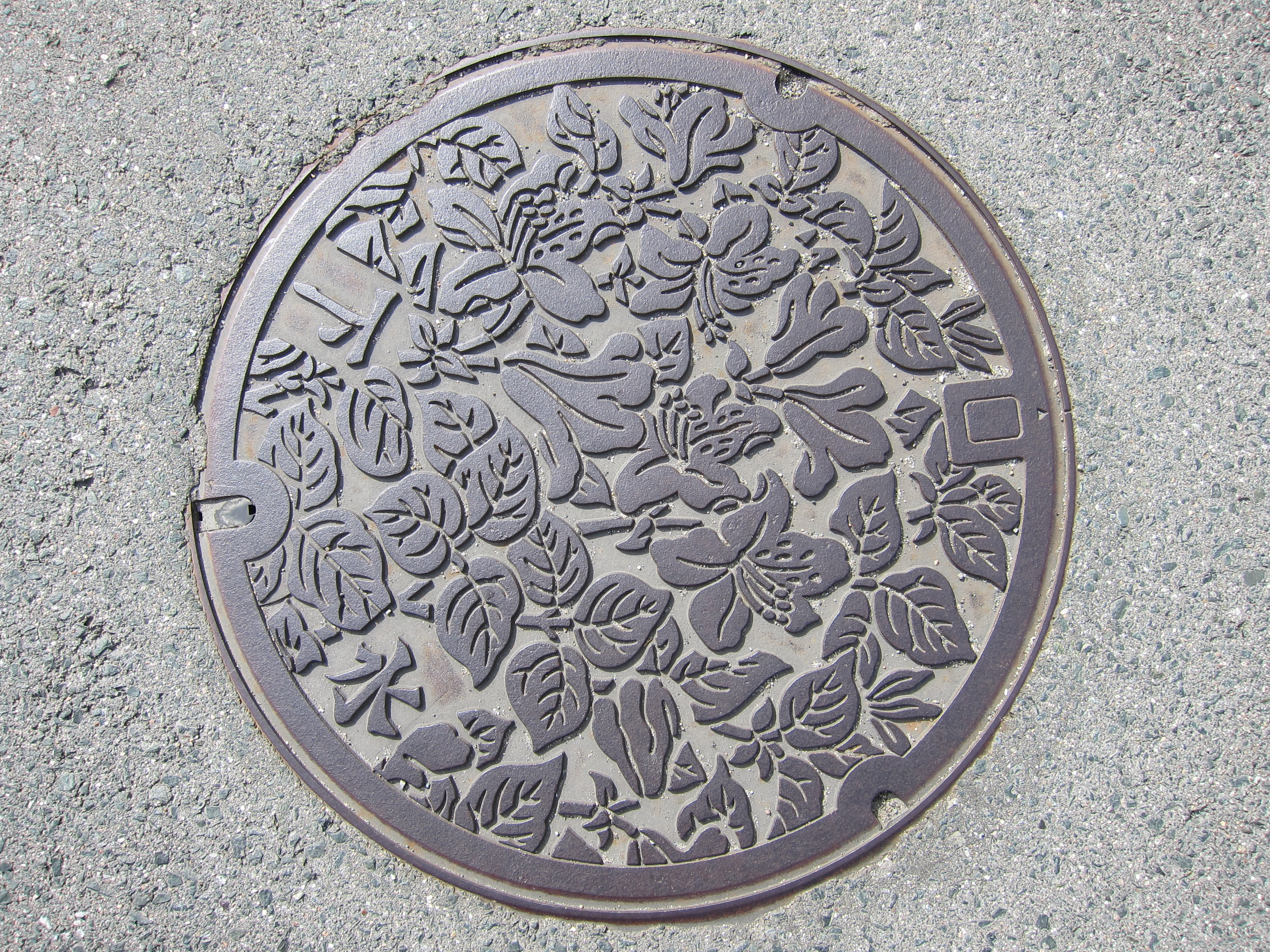 Manhole Covers The Japans