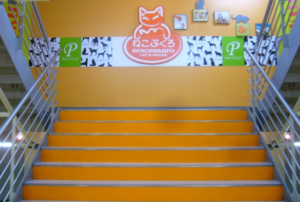 cat café in japan: nekobukuro entrance