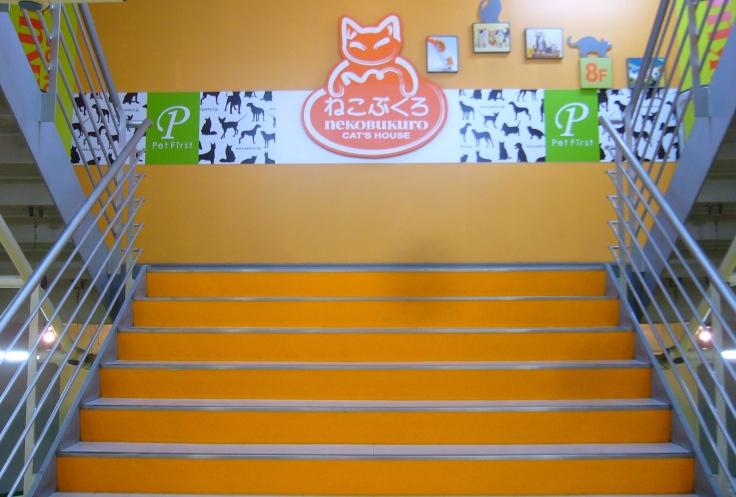 cat café in japan: nekobukuro entrance