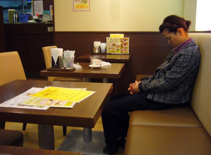 cat-nap in japanese restaurant