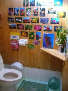 cheerful japanese toilet